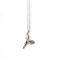 christina jervey jewelry sand tiger shark tooth pendant sterling silver necklace