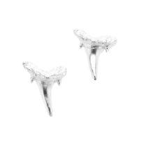 Sterling-Sharks-Teeth